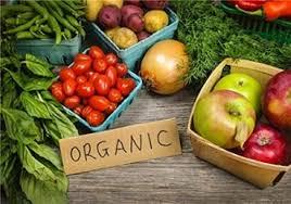 ضرورت توسعه کشاورزی ارگانیک وتولید محصول سالم