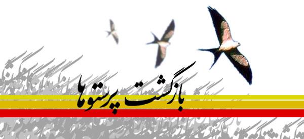 تبریک ورود آزاده گان سرافراز به ایران اسلامی