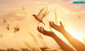 لذت بخشش در دین اسلام