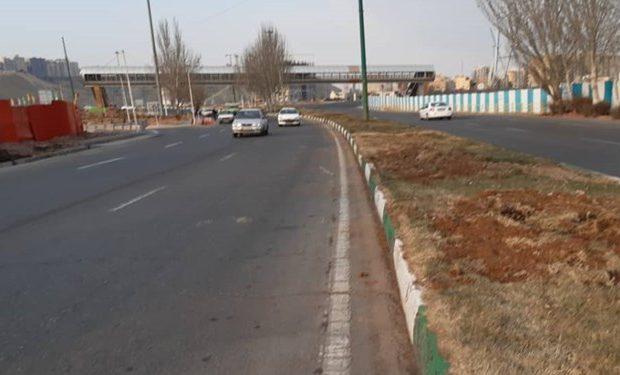 هفته درختکاری به پایان رسید، نهالهای شهرداری تبریز به مقصد نرسید