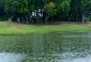 کاهش ۱۳ درصدی بارندگیها در آذربایجانشرقی / کاهش ۵۰ درصدی روان آبها