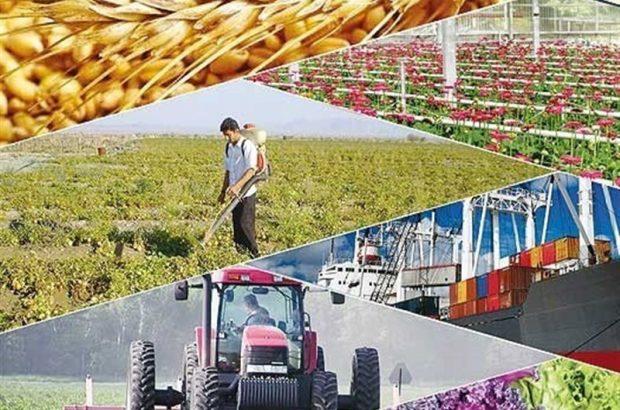"""بخش کشاورزی میتواند به موتور محرک """"تولید صادرات محور"""" آذربایجان شرقی تبدیل شود"""