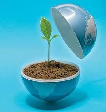 خاک و اهمیت آن