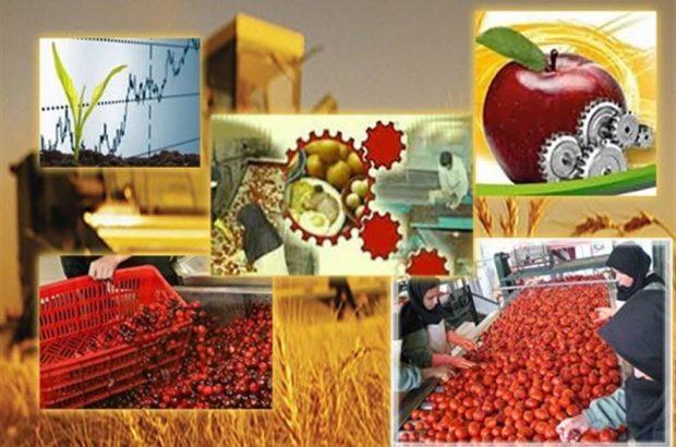 گسترش صنایع تبدیلی عامل افزایش سود کشاورزان استان آذربایجان شرقی است