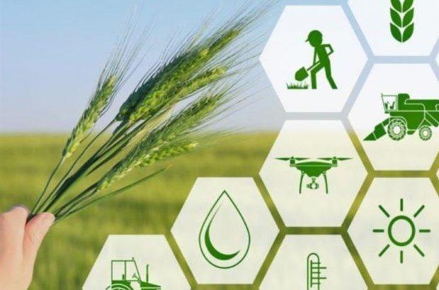 تنوع اقلیمی آذربایجان شرقی بهترین فرصت برای تقویت تولیدات کشاورزی است