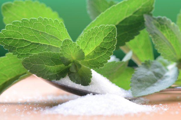 پژوهش درباره انواع گیاهان قندی در دستور کار موسسه تحقیقات اصلاح و تهیه بذر چغندرقند