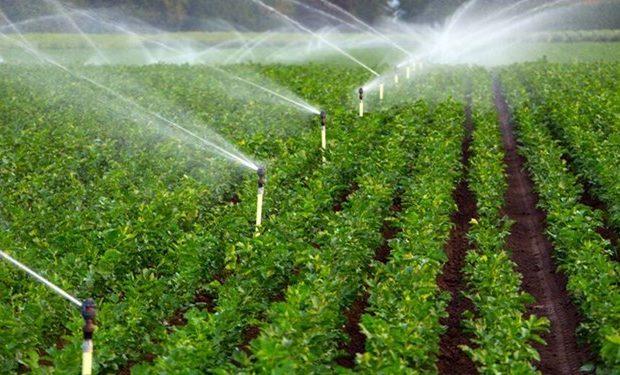 ۲۰ هزار هکتار از اراضی کشاورزی مرزی آذربایجانشرقی به سیستمهای نوین آبیاری مجهز شد